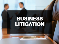 Business Litigation Cases